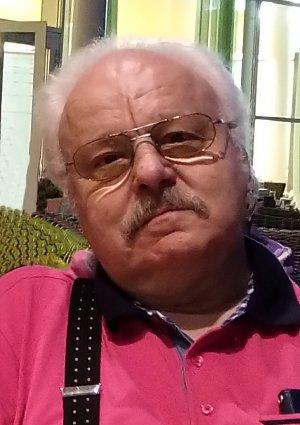 Portrait von Ing. Constantin Juncu